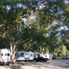 Shaded Camp Sites and Mature Oak Trees