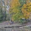Park Ridge RV